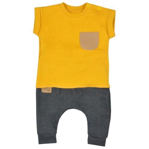 Baba szabadidő nadrág és póló Koala Summer Boy mustár szürke-zöld